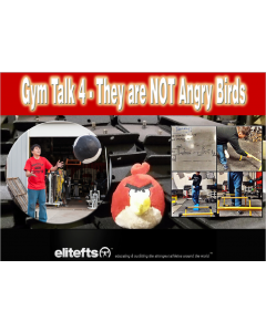 Gym Talk 4: They Are NOT Angry Birds (eBook)