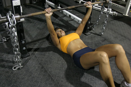 Floor Press W/ Chains. I ...