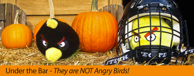 They are NOT Angry Birds! (Part 2.1)