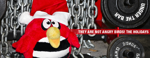 Under The Bar: They are NOT Angry Birds! The Holidays