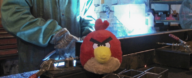 They are NOT Angry Birds! Normalcy?