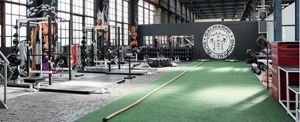 Top Swiss Gym, Galmarini Elite Training