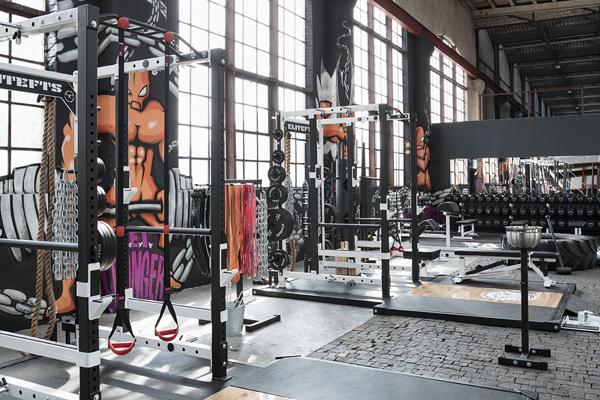 Top Swiss Gym Galmarini Elite Training FTS