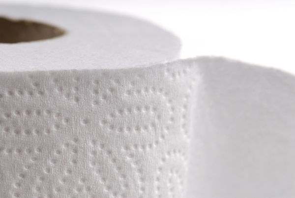 White rolled toilet paper