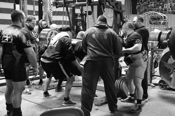 25cb0279a30 lifting crew environment elitefts 032414
