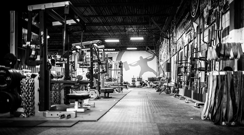 elitefts gym