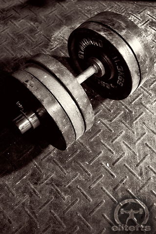 Bodybuilding Iphone Wallpaper Mobile Wallpapers / Elite FTS