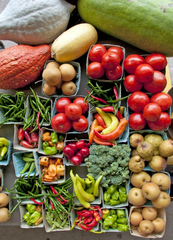 organic crop dugdale 011215