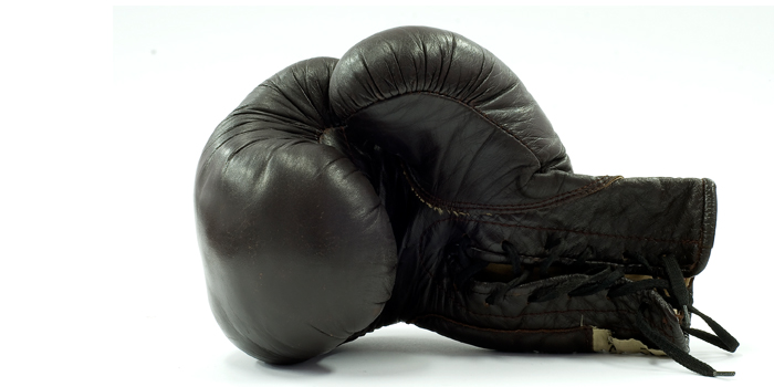 Training Energy Systems for Boxing Success