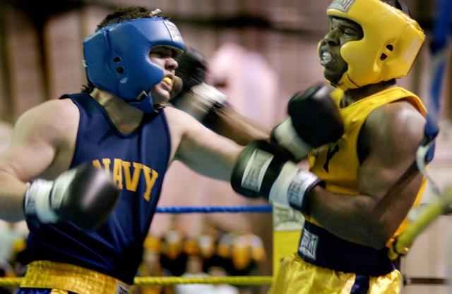 boxers-557137_640