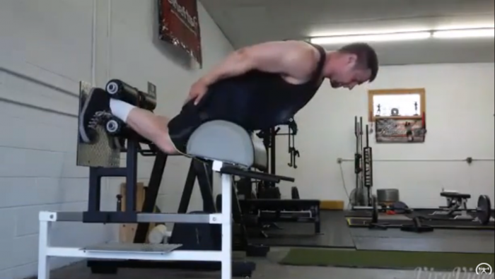 elitefts™ Glute-ham Raise Ladders