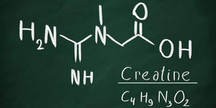 Did Creatine Monohydrate Cause 'Supplement Rage' in South Carolina Police Officer?