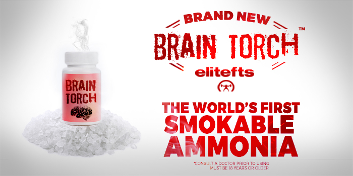 New Product: elitefts Brain Torch