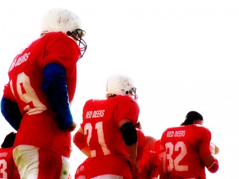 red deers football player
