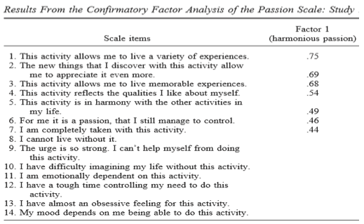 results from confirmatory factor analysis
