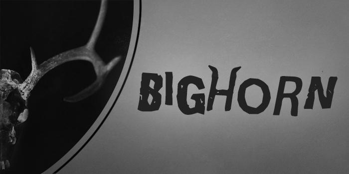 BIGHORN: Love and Momentum