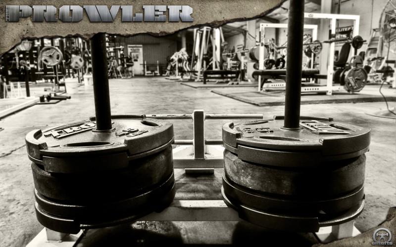 prowler-1920_4529551267_o