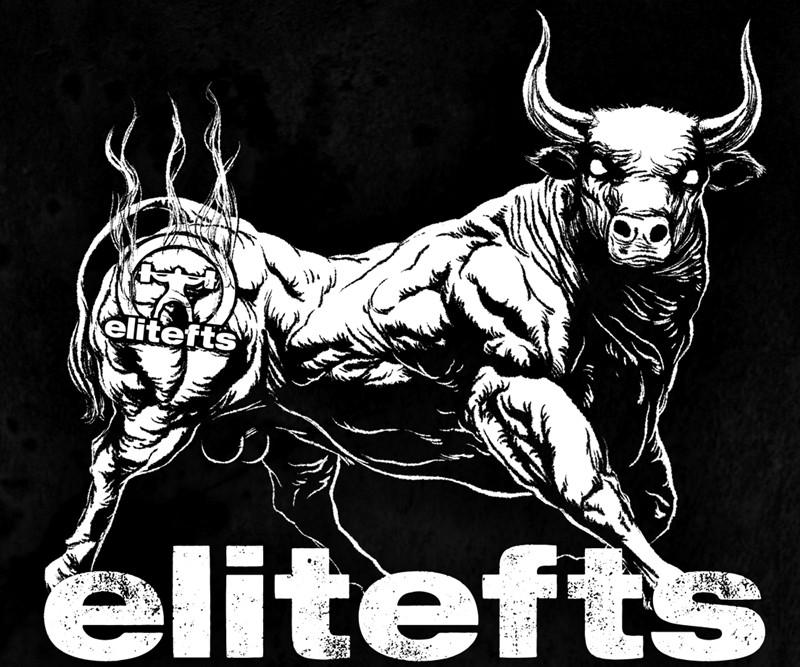 Bull-Brand-Desktop-12