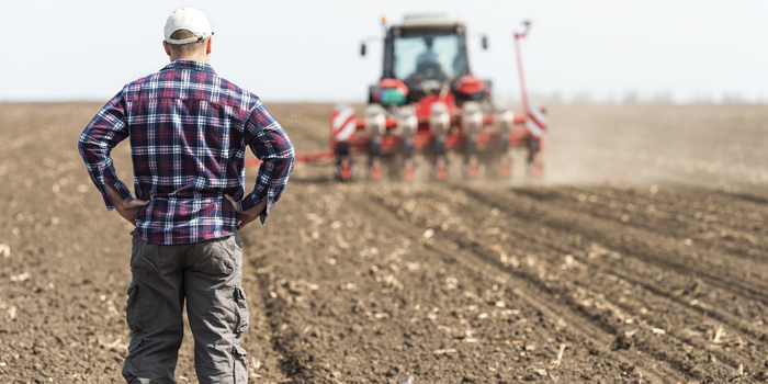 The Farmer Phase — Don't Get Stuck Here
