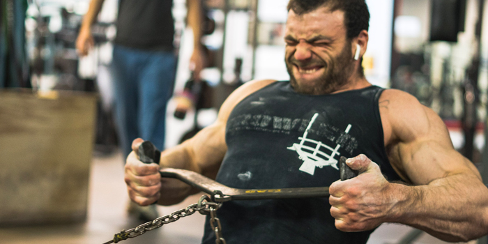 Bodybuilding for the Powerlifter: The Offseason (with Full Program)