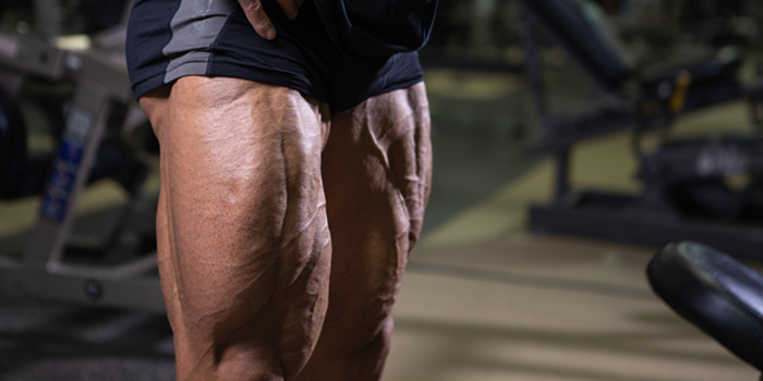 Grow BIG Quads Without Lower Back Pain