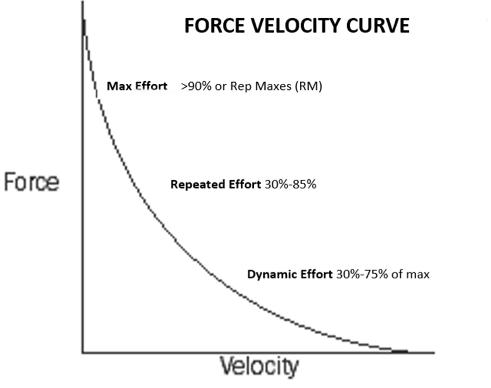 nate harvey force-velocity curve
