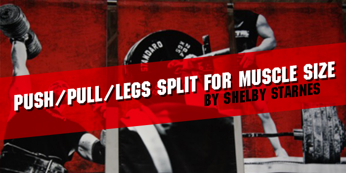 Push/Pull/Legs Split for Muscle Size