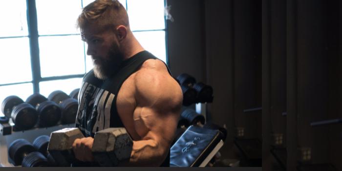 Biceps: Big Arms, Big Total?