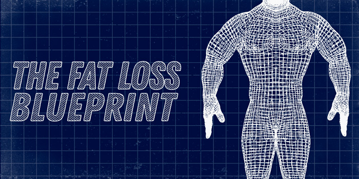 The Fat Loss Blueprint